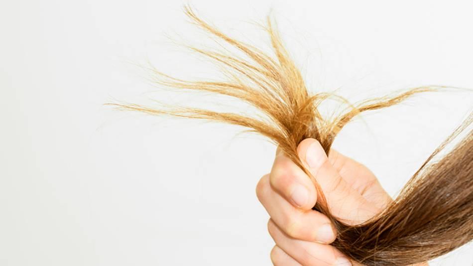 10 consejos para evitar que tu pelo se vuelva seco y quebradizo | Blog Garnier